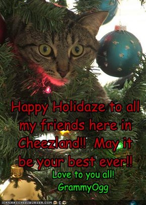 Happy Holidaze to all my friends here in Cheezland!!  May it be your best ever!!