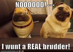 NOOOOOO! ---   I wunt a REAL brudder!