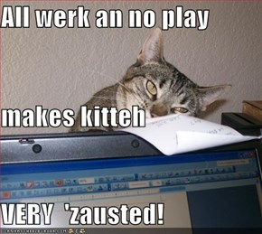All werk an no play makes kitteh VERY  'zausted!