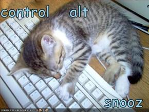 control   alt    snooz