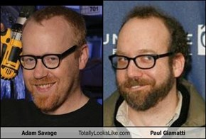 Adam Savage Totally Looks Like Paul Giamatti