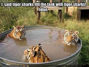 I  said tiger sharks, fill the tank with tiger sharks!Idiot.