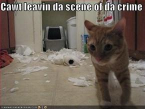 Cawt leavin da scene of da crime