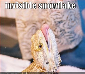 invisible snowflake