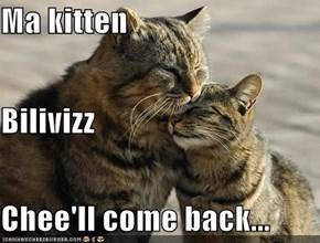 Ma kitten Bilivizz Chee'll come back...