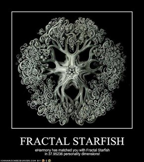 FRACTAL STARFISH