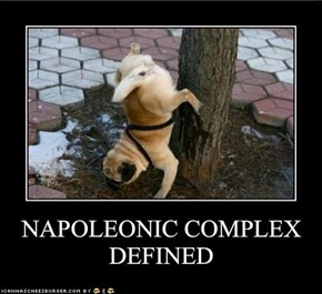 NAPOLEONIC COMPLEX DEFINED