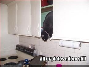 all ur plates r dere still