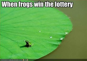 When frogs win the lottery