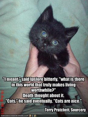 """""""I meant,"""" said Ipslore bitterly, """"what is there in this world that truly makes living worthwhile?""""Death thought about it.""""Cats,"""" he said eventually. """"Cats are nice."""""""