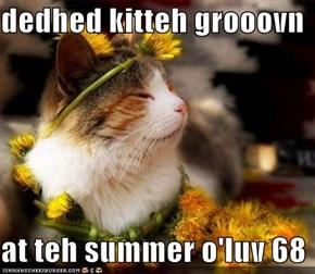 dedhed kitteh grooovn  at teh summer o'luv 68