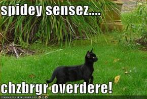 spidey sensez....  chzbrgr overdere!