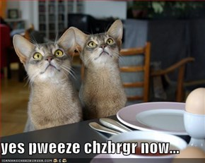 yes pweeze chzbrgr now...