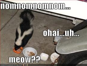 nomnomnomnom...                          ohai...uh...      meow??