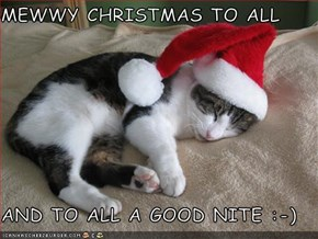MEWWY CHRISTMAS TO ALL   AND TO ALL A GOOD NITE :-)