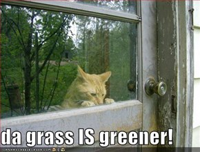 da grass IS greener!