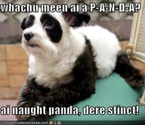 whachu meen ai a P-A-N-D-A?  ai naught panda, dere stinct!
