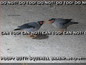 DO NOT! DO TOO! DO NOT! DO TOO! DO NOT! DO TOO! CAN TOO! CAN NOT! CAN TOO! CAN NOT! CAN TOO! CAN NOT! POOPY BUTT! SQUIRELL BRAIN!..M-O-M!!!