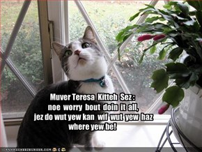 Muver Teresa  Kitteh  Sez : noe  worry  bout  doin  it  all,  jez do wut yew kan  wif  wut  yew  haz where yew be!