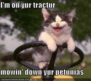 I'm on yur tractur  mowin' down yur petunias