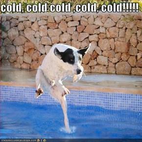 cold, cold cold ,cold, cold!!!!!