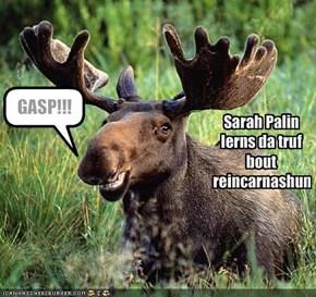 Sarah Palin lerns da truf bout reincarnashun