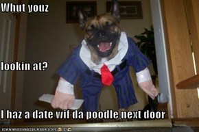 Whut youz lookin at?  I haz a date wif da poodle next door