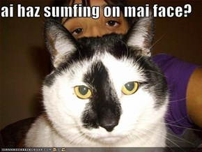 ai haz sumfing on mai face?