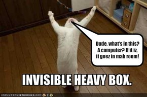 INVISIBLE HEAVY BOX.