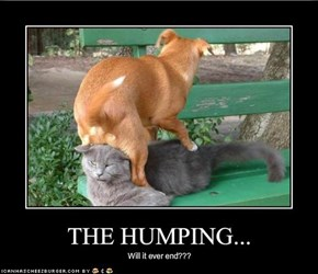 THE HUMPING...
