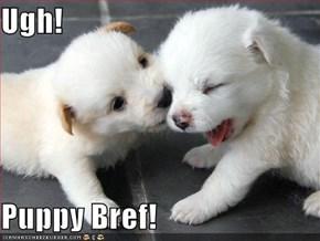 Ugh!  Puppy Bref!