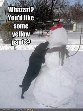 Whazzat?  You'd like some yellow pants?