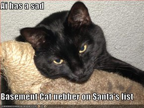 Ai has a sad  Basement Cat nebber on Santa's list