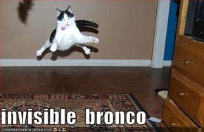 invisible  bronco