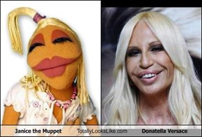 Janice the Muppet Totally Looks Like Donatella Versace