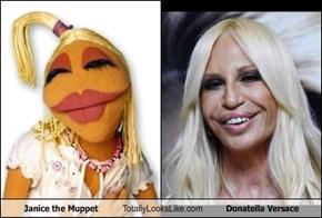 Janice the Muppet Totally Looks Like Donatella Versace