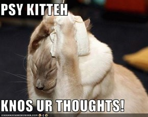 PSY KITTEH  KNOS UR THOUGHTS!
