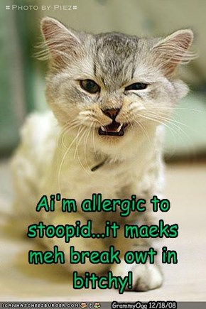 Ai'm allergic to stoopid...it maeks meh break owt in bitchy!