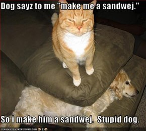 "Dog sayz to me ""make me a sandwej.""   So i make him a sandwej.  Stupid dog."