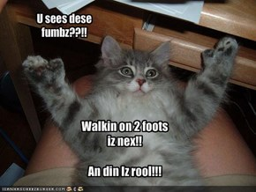 U sees dese fumbz??!!