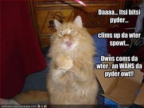Daaaa... Itsi bitsi pyder...clims up da wter spowt...Dwns coms da wter.. an WAHS da pyder owt!!