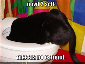 nowt 2 self:  tukeela no is frend.
