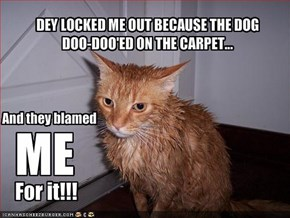DEY LOCKED ME OUT BECAUSE THE DOG DOO-DOO'ED ON THE CARPET...