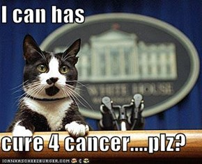 I can has  cure 4 cancer....plz?