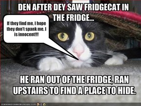 DEN AFTER DEY SAW FRIDGECAT IN THE FRIDGE...