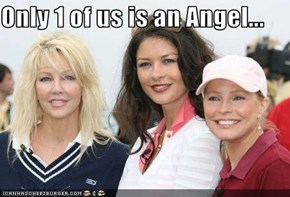 Only 1 of us is an Angel...