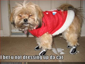 I bet u not dressing up da cat