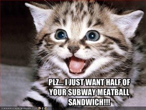 PLZ... I JUST WANT HALF OF YOUR SUBWAY MEATBALL SANDWICH!!!