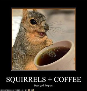SQUIRRELS   COFFEE