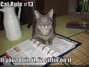 Cat Rule #13  If youz doin it, i'z sittin on it